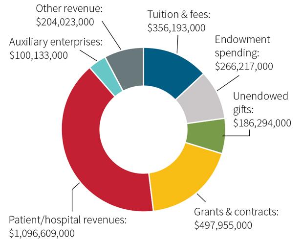 chart - 2015 revenues