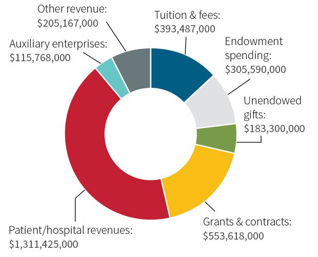 chart - 2017 revenues