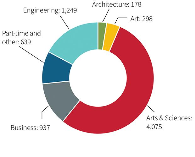 nrollment chart - undergraduates