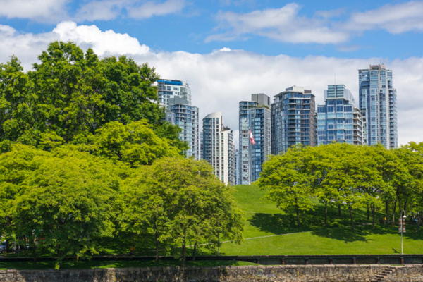 Green space and city buildings