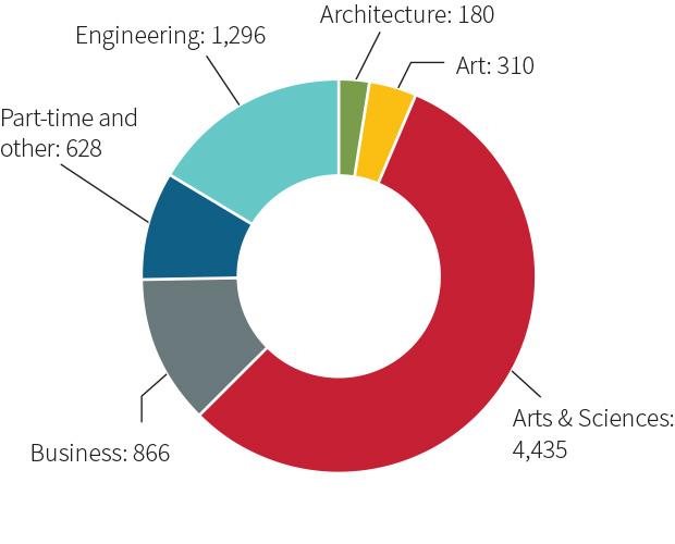 enrollment chart - undergraduates