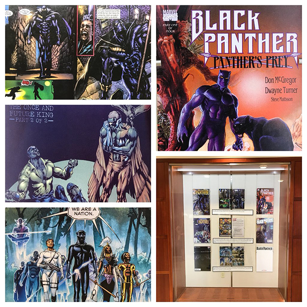 Sample of items in the Black Panther exhibit