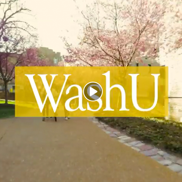 WashU over scene of spring trees