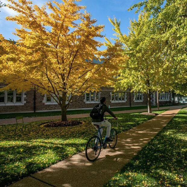 man bikes across campus under fall foliage