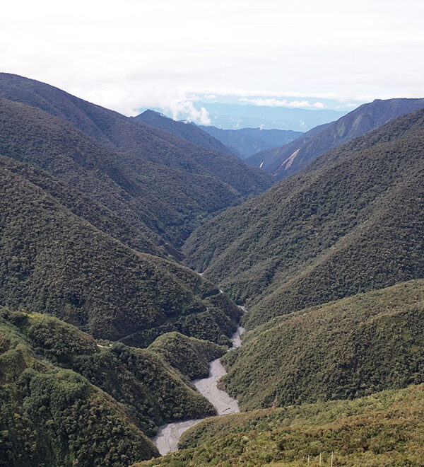 aerial view of a river in the Andes