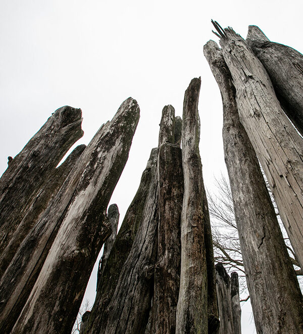 old wooden pillars against gray sky
