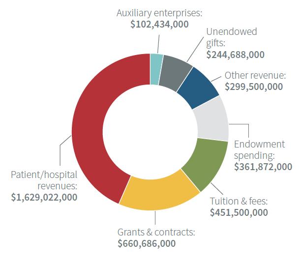 chart of university revenue i 2020