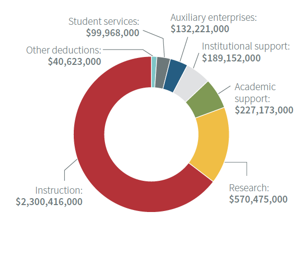 chart of university expenses in 2020